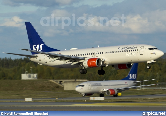 LN-RCX, Boeing 737-800, Scandinavian Airlines System (SAS)